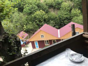 ツリーハウスからの眺め