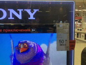 テレビ価格